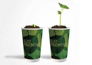 Bæredygtigt papkrus i FSC certificeret pap og bioplast