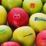 Frugt med spiseligt tryk i specialfarver
