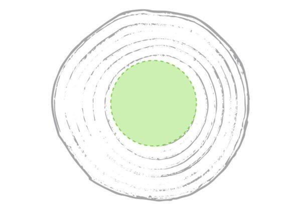 coaster-natur-fyrretrae-trykomraade-50x50mm