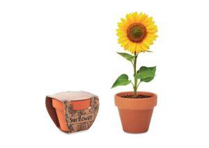 Urtepottesæt med solsikkefrø, plant en bæredygtig blomst.