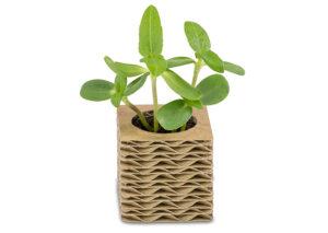 Mini-plantegave-i-bølgepap-enkelt