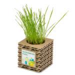 Mini-plantegave-i-bølgepap-med-reklame på pap