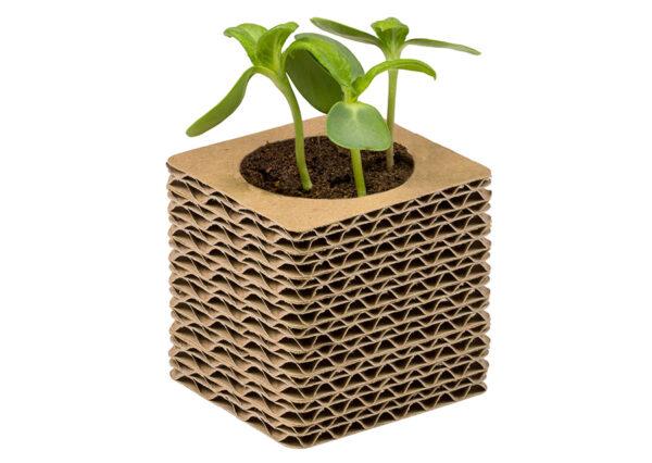 Plantegave-i-bølgepap-flere